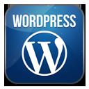 real-wordpress-theme-developers