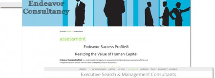 Endeavor Consultancy – 2014 First Born